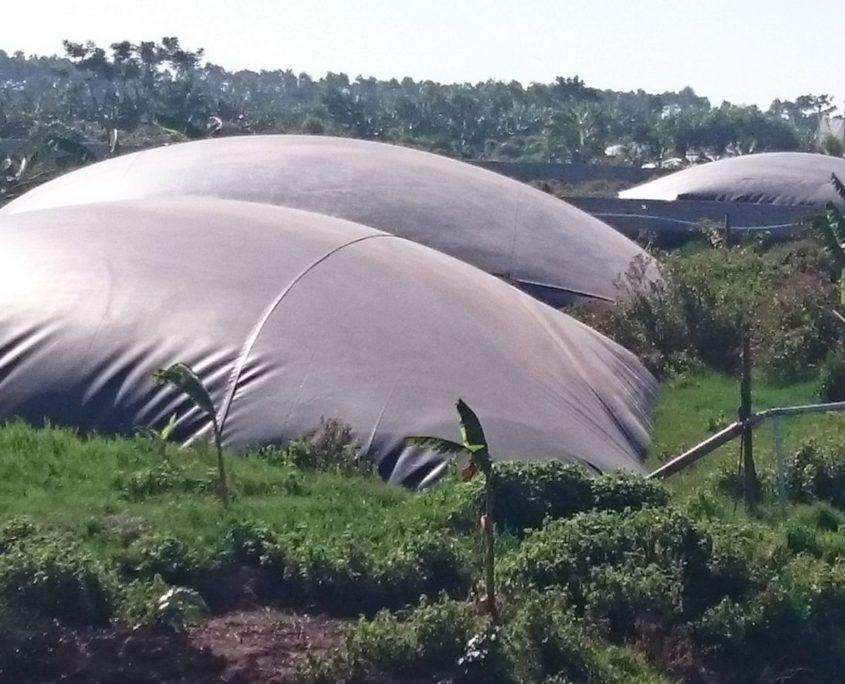 ho-biogas